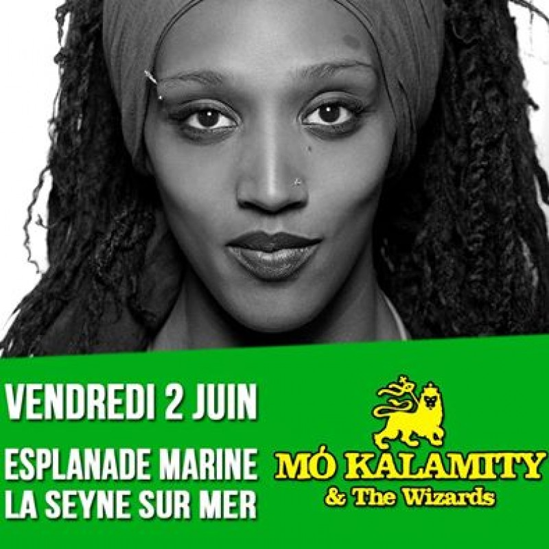 Mo\'Kalamity & The Wizards au festival Couleurs Urbaines
